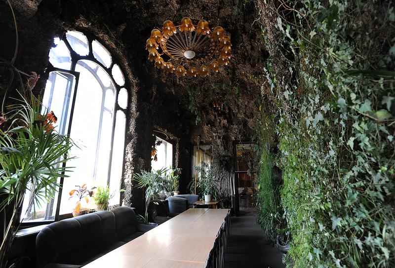 Дом Ушковой зимний сад